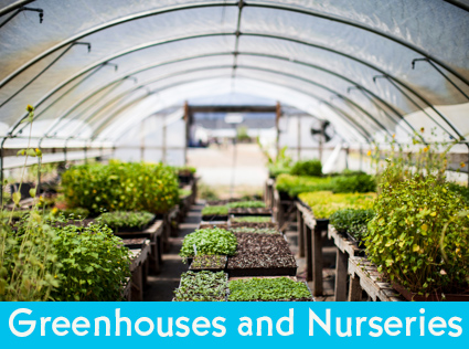 Greenhouses and Nurseries